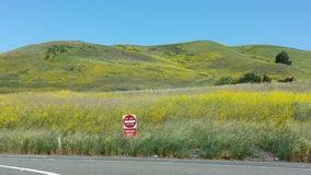 Lush California field & Do Not Enter sign Royalty Free Stock Image