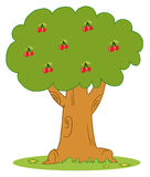 Lush cherry tree Stock Photography