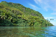 Lush coastal landscape Huahine French Polynesia. Coastal landscape with lush green vegetation on unspoiled shore, Huahine island, Pacific ocean, French Polynesia Stock Photo