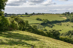 Lush countryside near Liskeard, Cornwall Royalty Free Stock Photography