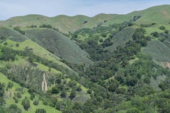 Lush Crevice. View of gorgeous lush mountains, covered in green bushes, along the Flag Hill Hiking Trail, in Sunol Regional Wilderness Park Stock Photo