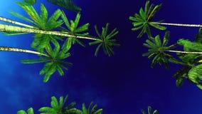 Lush exotic vegetation in tropical jungle. Lush exotic vegetation in jungle stock illustration