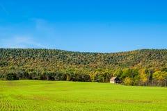 Lush Farmland Roads Flowing Around Raystown Lake, in Pennsylvani Royalty Free Stock Photo