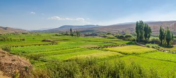 Lush fertile valley of Dades Gorge landscape with green plantations and fields, Morocco, North Africa stock photo