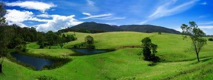Lush Field Panorama Royalty Free Stock Photo