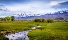 Lush Fields and Mountains. Creek running through the lush fields and snow capped mountains in the backdrop, in Utah Stock Photography