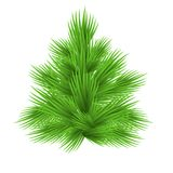 Lush fir tree Isolated on white  illustration. Lush fir tree Isolated on white  illustration Royalty Free Stock Images