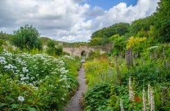 Lush flower garden. S Dunraven Castle Park Royalty Free Stock Photo