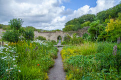 Lush flower garden. S Dunraven Castle Park Royalty Free Stock Photography