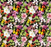 Lush flowers , butterflies on black background. Floral pattern. Water color stock illustration