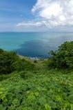 Lush foliage on island. Lush foliage on the island of Koh Lanta in Thailand Stock Image