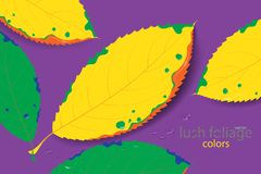 Lush foliage vector leaf colors royalty free illustration