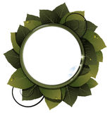 Green leaves  round frame Royalty Free Stock Images