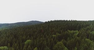Lush forest against sky. Drone view of lush forest against sky stock video footage