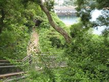 The lush forest in Ma Hung park, Stanley, Hong Kong stock photography
