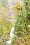 Lush forest Multnomah Falls and Benson Footbridge Stock Photos