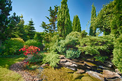 Lush garden. Lush luxurious garden against blue sky royalty free stock photo