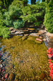 Lush garden pond Stock Photography