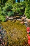 Lush garden pond. A pond in a lush garden Stock Photography
