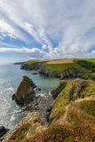 Lush Grass at Cliffs  in Ireland Royalty Free Stock Photos