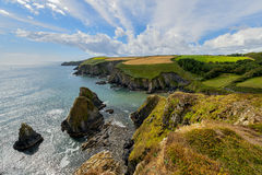 Lush Grass at Cliffs  in Ireland Royalty Free Stock Images
