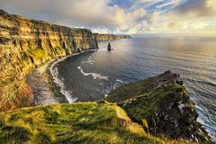 Lush Grass at Cliffs of Moher Stock Photo