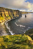 Lush Grass at Cliffs of Moher Stock Images