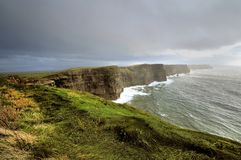 Lush Grass at Cliffs of Moher Royalty Free Stock Photos