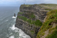 Lush Grass at Cliffs of Moher in Ireland Stock Images