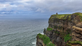 Lush Grass at Cliffs of Moher in Ireland, nature Royalty Free Stock Images