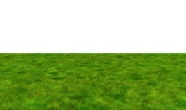 Lush grass field on white background, 3d illustration. Lush grass field on white background, 3d illustration Stock Photography