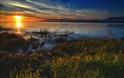 Lush grass river bank sunset Royalty Free Stock Photos