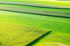 Lush Green Fields Aerial View Royalty Free Stock Photography