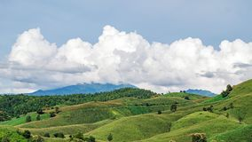 The lush green forest of northern Thailand, Phrae province. Mountain and Forest in Northern Thailand , Phare stock images