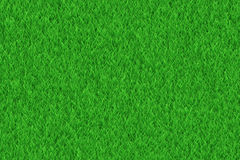 Lush green freshness grass texture Royalty Free Stock Image