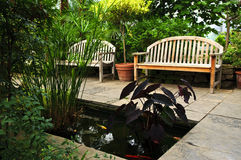 Lush green garden Royalty Free Stock Photography