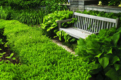 Lush green garden. With stone landscaping, hedge and bench Stock Photo