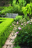 Lush green garden Stock Photos
