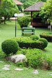 Lush Green, gardening, landscaping, park decoration Royalty Free Stock Images