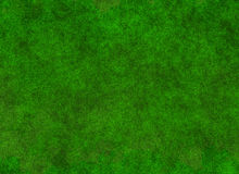 Lush green grass blur texture. wallpapers pattern. Top view Royalty Free Stock Images