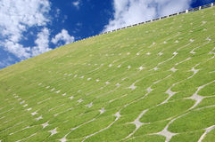 Lush green grass on the slope of a flyover Royalty Free Stock Image