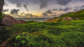 Lush green grass in the sunrise on the seychelles 1. Lush green grass and red granite rocks in the sunrise on the seychelles Stock Image