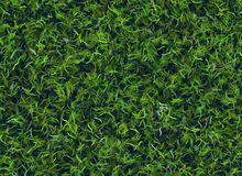 Lush green grass texture backgrounds. Lush green grass texture with blur backgrounds Royalty Free Stock Image