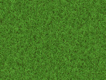 Lush green grass texture. wallpapers pattern Stock Photos