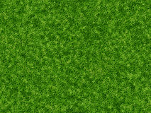 Lush green grass texture. wallpapers pattern Royalty Free Stock Images