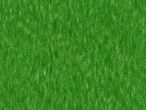 Lush green grass texture. wallpapers pattern Royalty Free Stock Image
