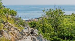 Lush green hillside overlooking the ocean in Massachusetts Royalty Free Stock Photo