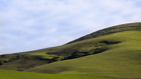Lush Green Hilly Pasture Royalty Free Stock Photo