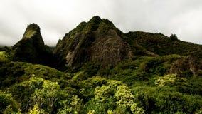 Lush Green Iao Needle. Time Lapse of Iao Valley in Maul Hawaii - 4K - 4096x2304 stock footage