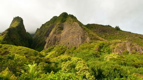 Lush Green Iao Needle stock footage